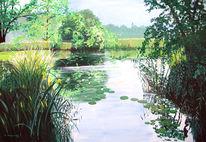 Natur, Wasser, Teich, Seerosen
