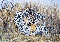 Mimikry, Steppe, Katze, Leopard