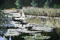 Wasser, Teich, Natur, Malerei