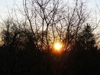 Morgen, Fotografie, Sonnenaufgang,