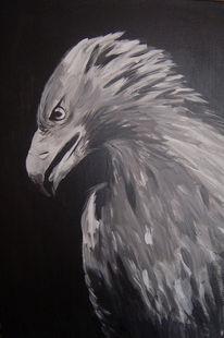 Schwarz weiß, Adler, Tiere, Malerei