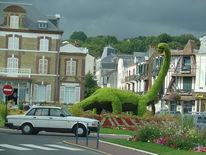 Dinosaurier, Frankreich, Fotografie, Villers