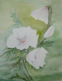 Natur, Blüte, Aquarellmalerei, Malerei