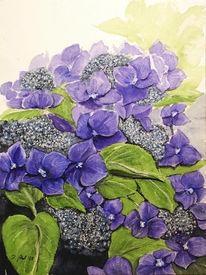 Aquarellmalerei, Hortensien, Blumen, Pflanzen