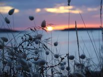 Wasser, Atlantikküste, Sonnenuntergang, Fotografie