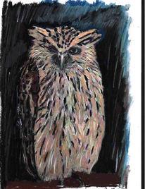 Erwachen, Malerei, Vogel, Wachsamkeit