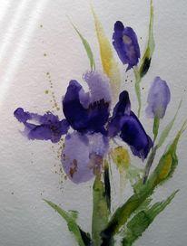 Nass, Blumen, Malerei, Aquarell