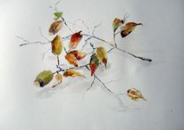 Pflanzen, Baum, Skizze, Aquarell