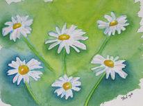 Grafik, Blumen, Aquarellmalerei, Aquarell