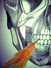 Skizze, Digital, Schädel, Zeichnung