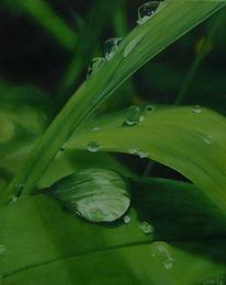 Blätter, Tropfen, Temperamalerei, Tau
