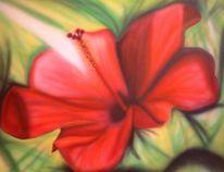 Grün, Malerei, Lotos, Rot