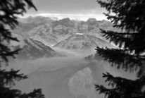 Traum, Unwirklich, Berge, Wald