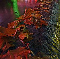 Wasser, Farben, Letzt, Blätter