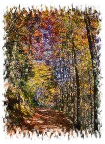 Herbst, Breitenstein, Fotografie, Landschaft