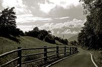 Fotografie, Reiseimpressionen, Südtirol, Weg
