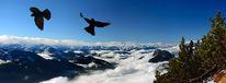 Überdenwolken, Sonneck, Dolen, Fotografie