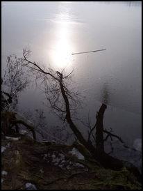 Eis, Wasserspiegelung, See, Winter