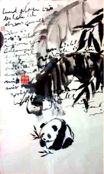 Natur, Landschaft, Panda, China