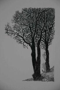 Viktringer kreis, Natur, Landschaft, Schwarz