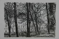 Botka, Baum, Landschaft, Musikforum viktring