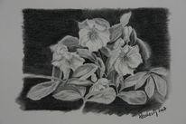 Viktringer kreis, Winter, Rosental, Zeichnung