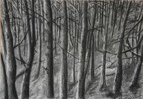 Viktringer kreis, Äste, Zeichnung, Wald