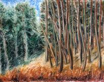 Baum, Zeichnung, Sonne, Landschaft