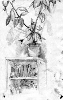 Bücher, Pflanzen, Regal, Zeichnungen
