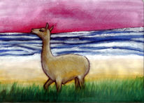 Welle, Malerei, Lama, Strand