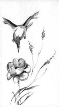 China, Vogel, Blumen, Zeichnungen