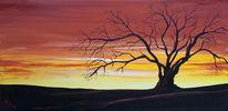 Baum, Wald, Abendlicht, Rot