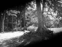 Fotografie, Sonne, Schwarz weiß, Ostsee