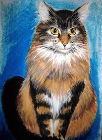 Zeichnung, Katzenportrait, Katze, Tiere