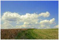 Landschaft, Fotografie, Wiese, Wolken