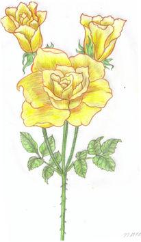 Bleistiftzeichnung Blumen Botanik 25 Bilder Und Ideen Zeichnen