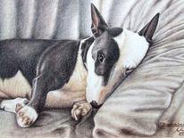 Hundeportrait, Bulldogge, Tiermalerei, Hundezeichnung