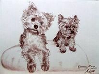 Hund, Braun, Kohlezeichnung, Hundemaler