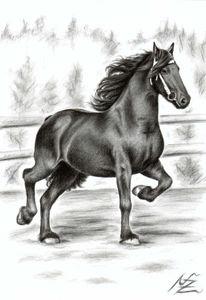 Tiere, Hengst, Zeichnung, Pferde