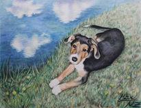 Aquarellmalerei, Schäferhund, Welpe, Hundeblick
