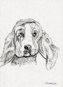 Hund, Traurigkeit, Tusche, Zeichnung