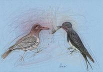 Vogel, Schwalbe, Schnaps, Zeichnung