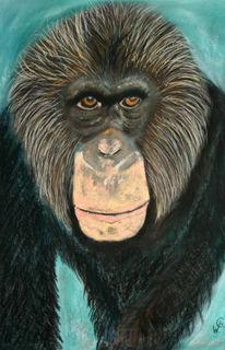 Tiere, Zoo, Malerei, Affe