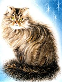 Tiermalerei, Portrait, Katze, Tierzeichnung