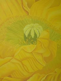 Blumen, Malerei, Pflanzen, Mohn