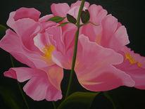 Pfingstrose, Ölmalerei, Garten, Blumen