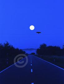 Landschaft, Himmel, Mond, Bussard
