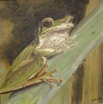 Frosch, Laubfrosch, Malerei,
