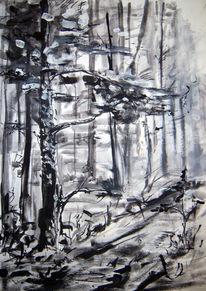 Wald, Baum, Schwarz weiß, Zeichnungen