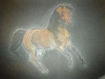 Zeichnung, Araber, Pferde, Galopp
